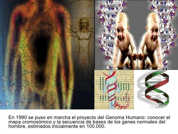 <ul><li>En 1990 se puso en marcha el proyecto del Genoma Humano: conocer el mapa cromosómico y la secuencia de bases de lo...