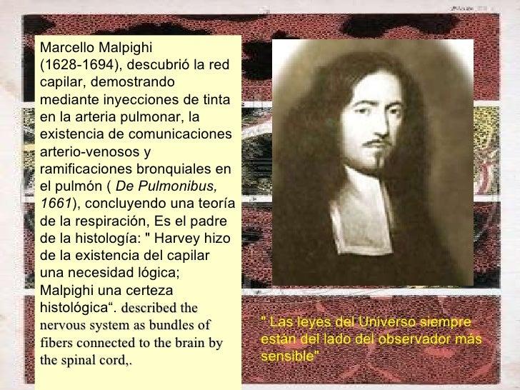Marcello Malpighi (1628-1694), descubrió la red capilar, demostrando mediante inyecciones de tinta en la arteria pulmonar,...