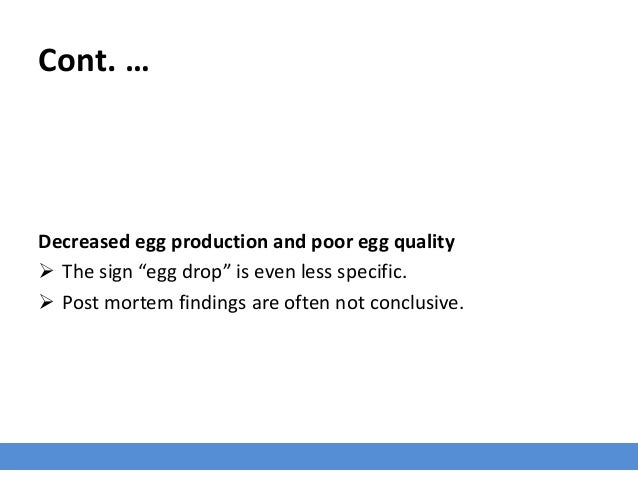 """Cont. … Decreased egg production and poor egg quality  The sign """"egg drop"""" is even less specific.  Post mortem findings ..."""