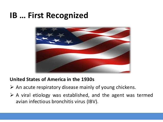 IB … First Recognized United States of America in the 1930s  An acute respiratory disease mainly of young chickens.  A v...