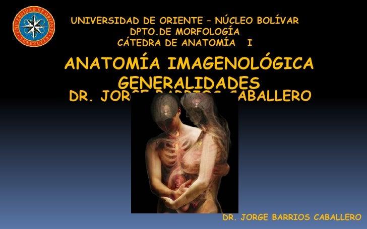 UNIVERSIDAD DE ORIENTE – NÚCLEO BOLÍVAR          DPTO.DE MORFOLOGÍA        CÁTEDRA DE ANATOMÍA IANATOMÍA IMAGENOLÓGICA    ...