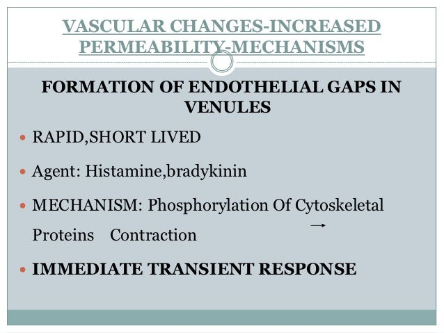 Endothelial injury, resulting in endothelialcell necrosis and detachment