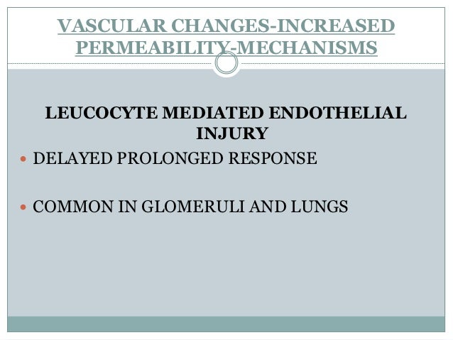 VASCULAR CHANGES-INCREASED     PERMEABILITY-MECHANISMS          INCREASED TRANSCYTOSIS ACROSS ENDOTHELIAL CYTOPLASM INCR...