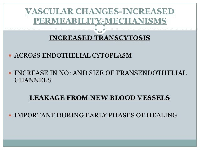 VASCULAR CHANGES-   INCREASED PERMEABILITY ESCAPE OF PROTEIN RICH FLUID AND BLOOD CELLS - FORMATION OF EXUDATE TRANSUDAT...