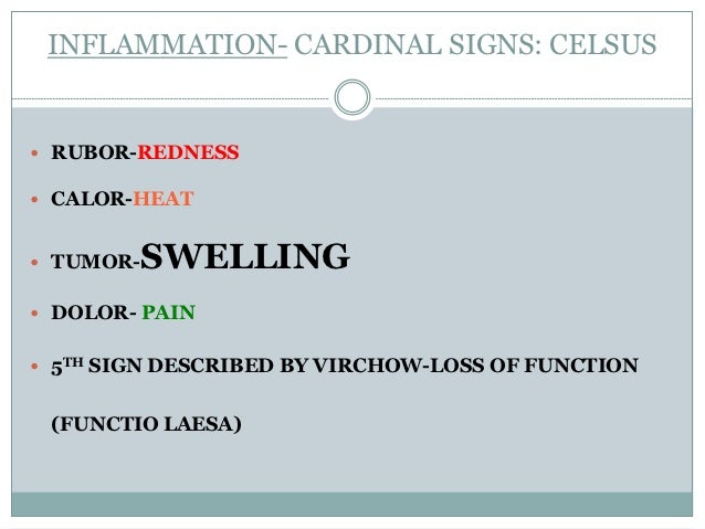 INFLAMMATION- CARDINAL SIGNS: CELSUS RUBOR-REDNESS CALOR-HEAT TUMOR-SWELLING DOLOR- PAIN 5TH SIGN DESCRIBED BY VIRCHO...