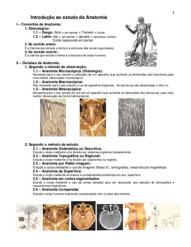 1         Introdução ao estudo da AnatomiaI – Conceitos de Anatomia:     1. Etimológico:           1.1 – Grego: Ana = em p...