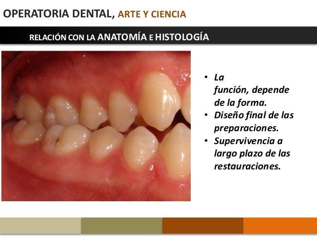 1 introducción a la operatoria dental