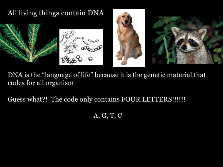"""All living things contain DNA DNA is the """"language of life"""" because it is the genetic material that codes for all organism..."""