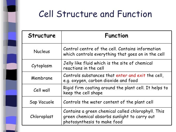 1 introduction to cells 9 728