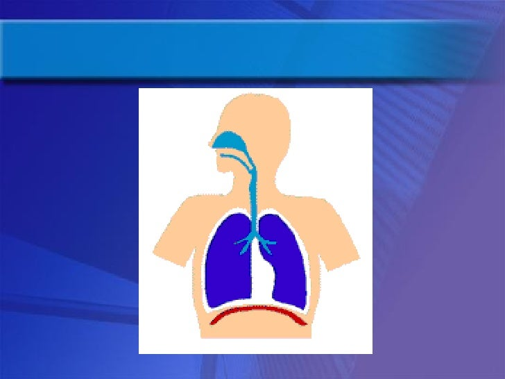Introduction Yoga Therapy For The Management Of Respiratory Disorders Slide 3