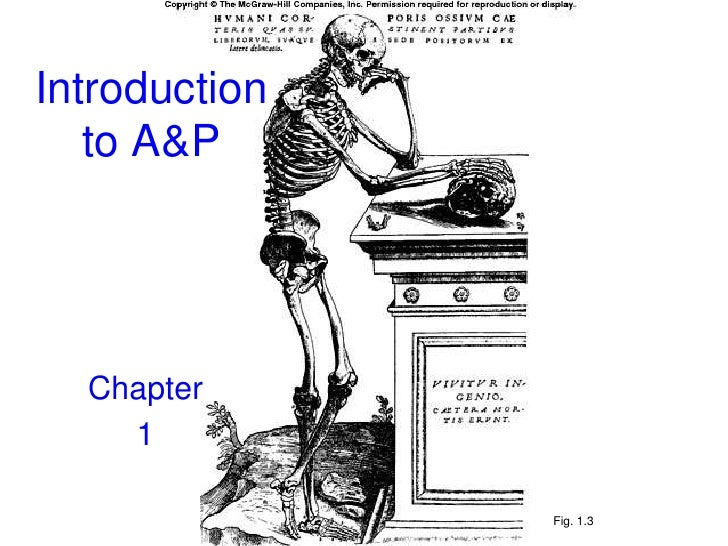 1- Introduction to A&P