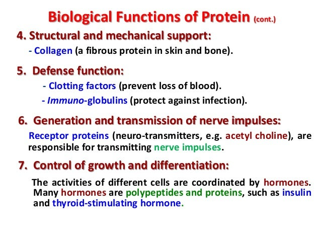 The Structure And Function Of Proteins Biology Essay