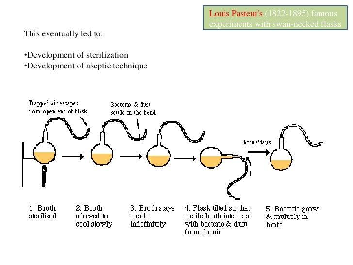 A Brief History of Microbiology<br />Development of microscopy<br />