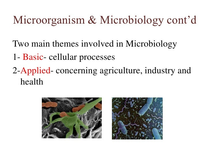 Microorganism & Microbiology cont'd<br />Two main themes involved in Microbiology<br />1- Basic- cellular processes<br />2...