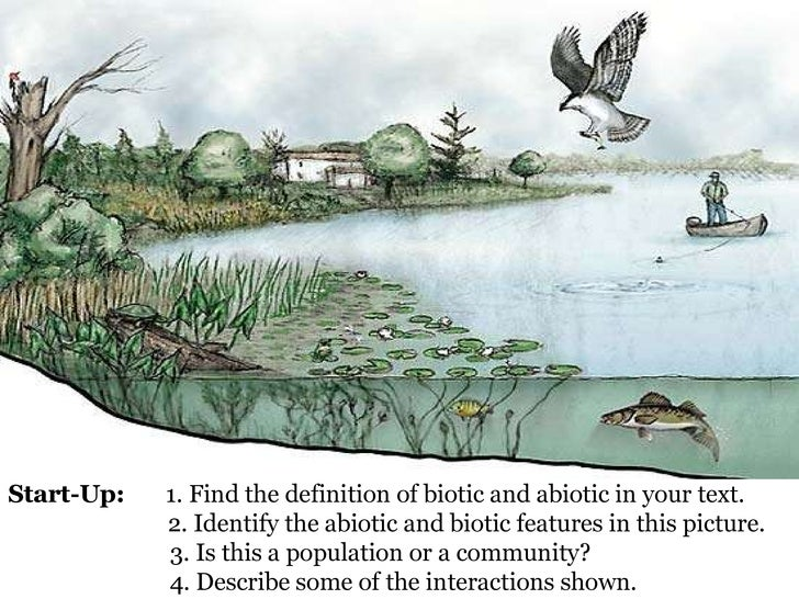 Start-Up:   1. Find the definition of biotic and abiotic in your text. 2. Identify the abiotic and biotic features in this...