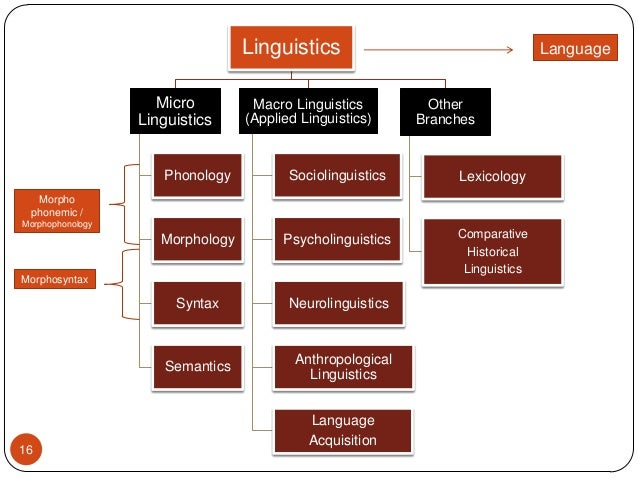 linguistic features of language Please elaborate the question more if you want a good answer one would need  to know what language and its dialects you are talking about there is no.
