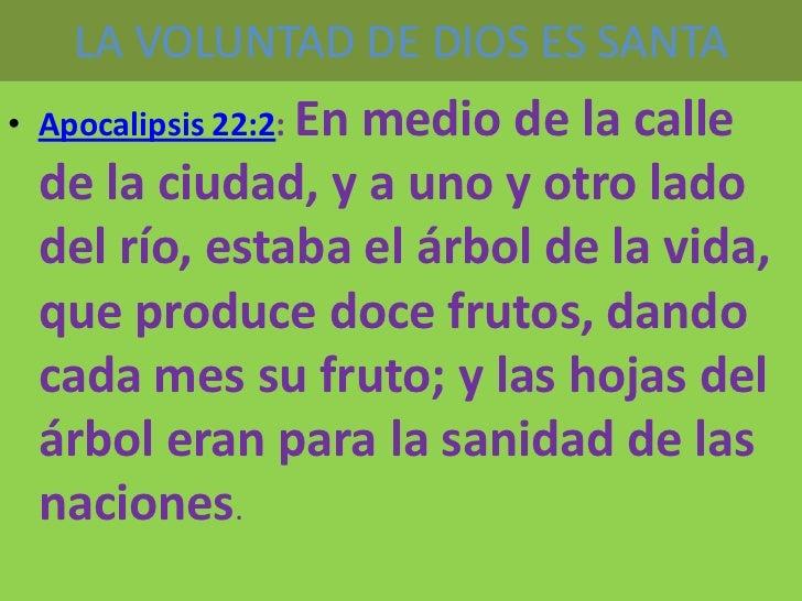 LA VOLUNTAD DE DIOS ES SANTA• Apocalipsis 22:2: En                 medio de la calle de la ciudad, y a uno y otro lado del...