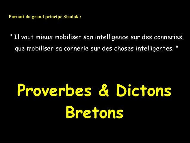 """Partant du grand principe Shadok :"""" Il vaut mieux mobiliser son intelligence sur des conneries,  que mobiliser sa connerie..."""