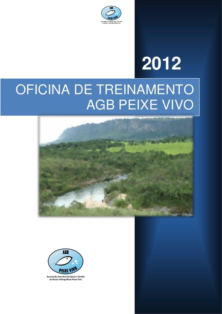 2012OFICINA DE TREINAMENTO         AGB PEIXE VIVO                       1