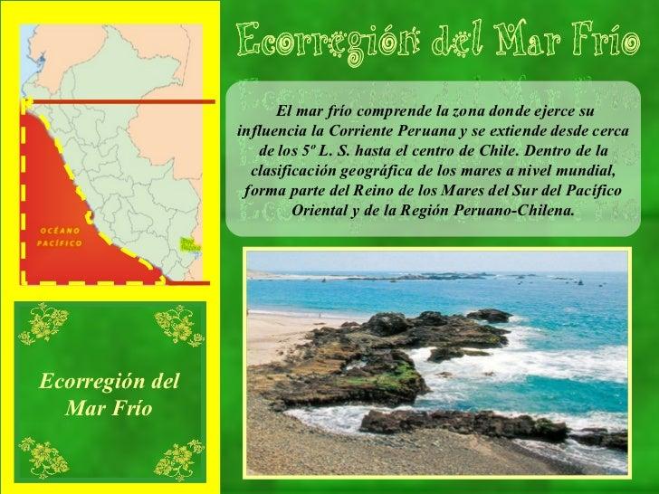 El mar frío comprende la zona donde ejerce su influencia la Corriente Peruana y se extiende desde cerca de los 5º L. S. ha...