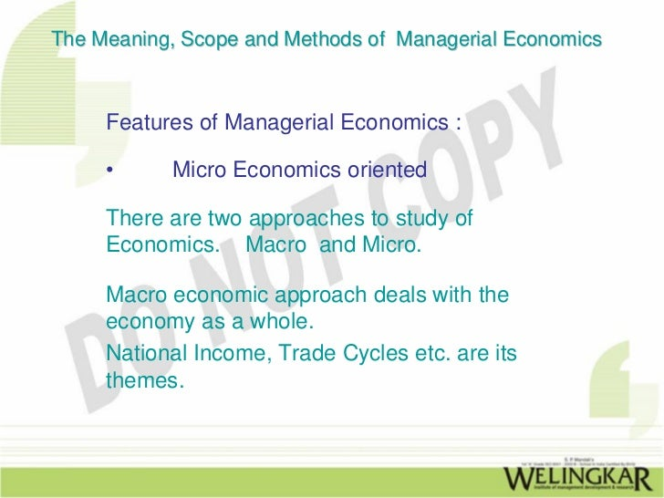 theory of firm in managerial economics pdf