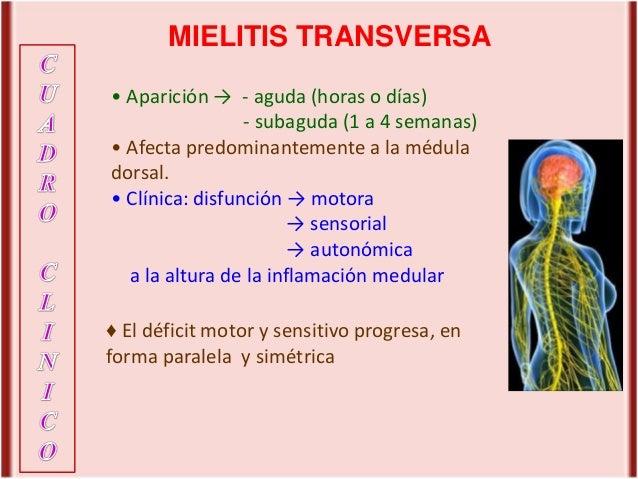 1 mielitis-transversa-may-2016
