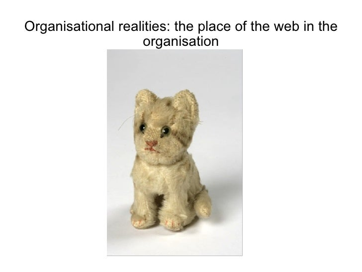 Organisational realities: the place of the web in the organisation