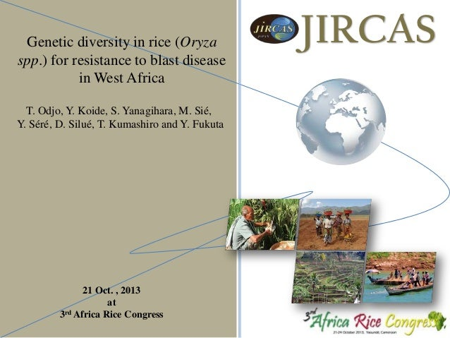 Genetic diversity in rice (Oryza spp.) for resistance to blast disease in West Africa T. Odjo, Y. Koide, S. Yanagihara, M....