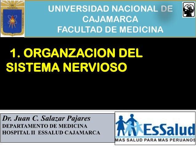 UNIVERSIDAD NACIONAL DE CAJAMARCA FACULTAD DE MEDICINA 1. ORGANZACION DEL SISTEMA NERVIOSO