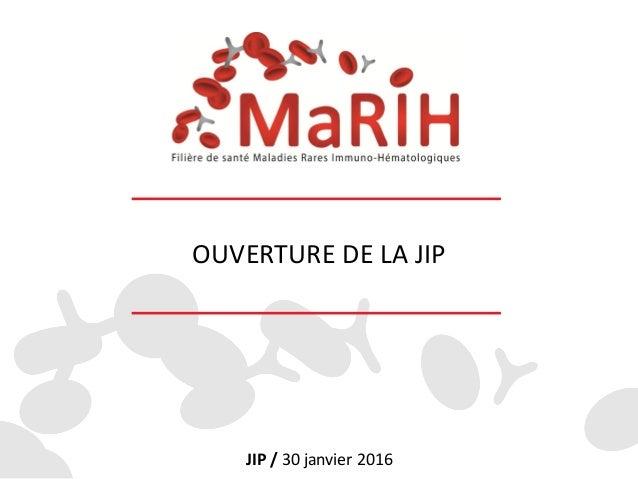 OUVERTURE DE LA JIP JIP / 30 janvier 2016