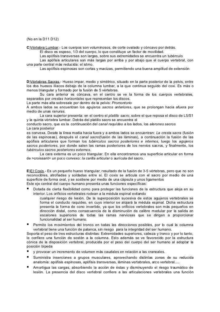 Fantástico Anatomía Temas De Tesis Motivo - Imágenes de Anatomía ...