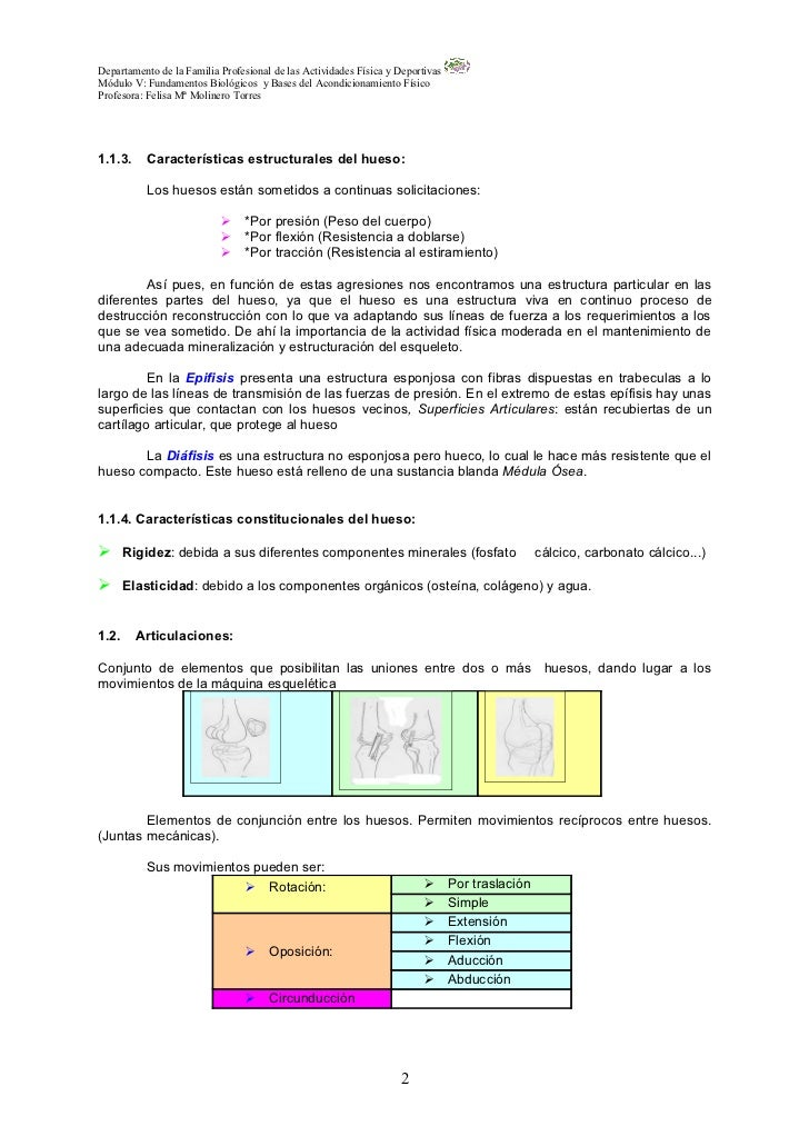 Magnífico Hueso Letras De Canciones Anatomía Imágenes - Anatomía de ...