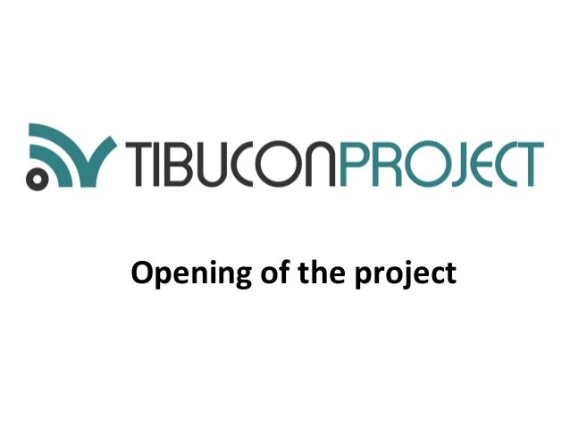 Opening of the project