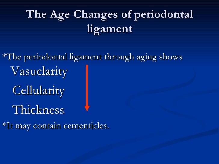 1  periodontal ligament future