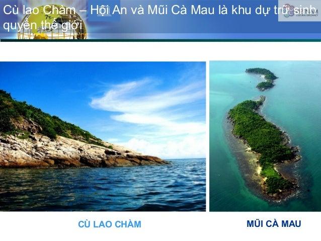 Cù lao Chàm – Hội An và Mũi Cà Mau là khu dự trữ sinh quyển thế giới CÙ LAO CHÀM MŨI CÀ MAU