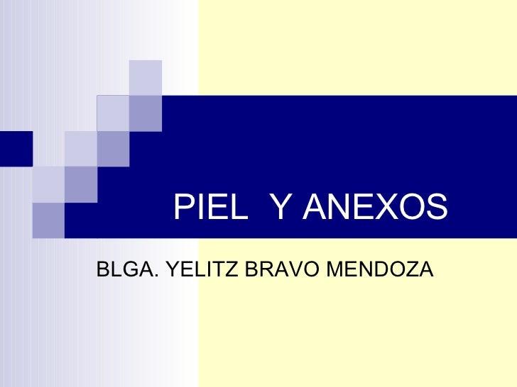 PIEL  Y ANEXOS BLGA. YELITZ BRAVO MENDOZA