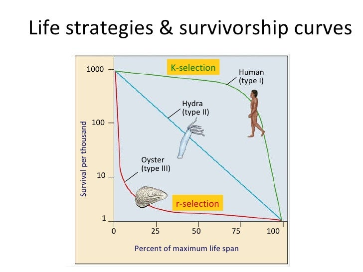 Population ecology 19 life strategies survivorship curves ccuart Image collections