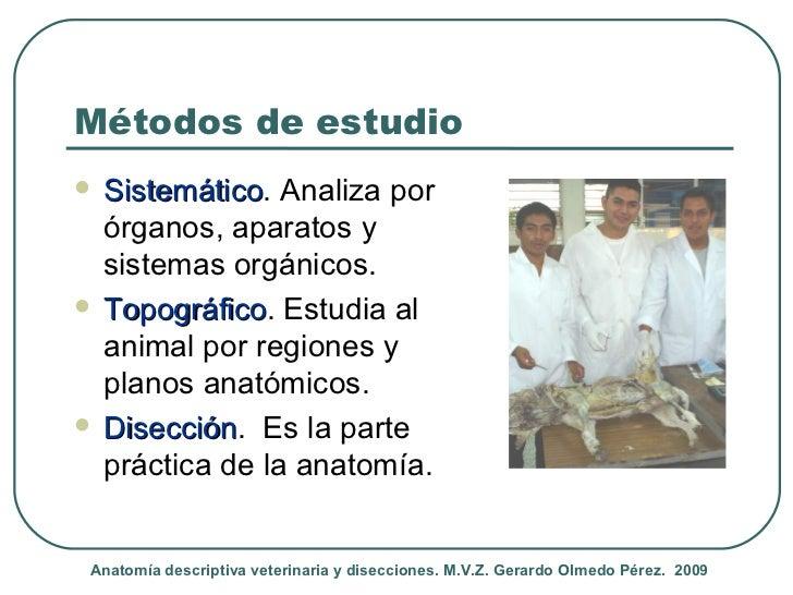 Introduccion al estudio de Anatomia Veterinaria Descriptiva