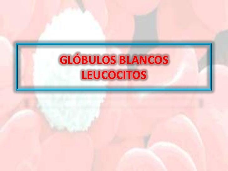 GLÓBULOS BLANCOS    LEUCOCITOS