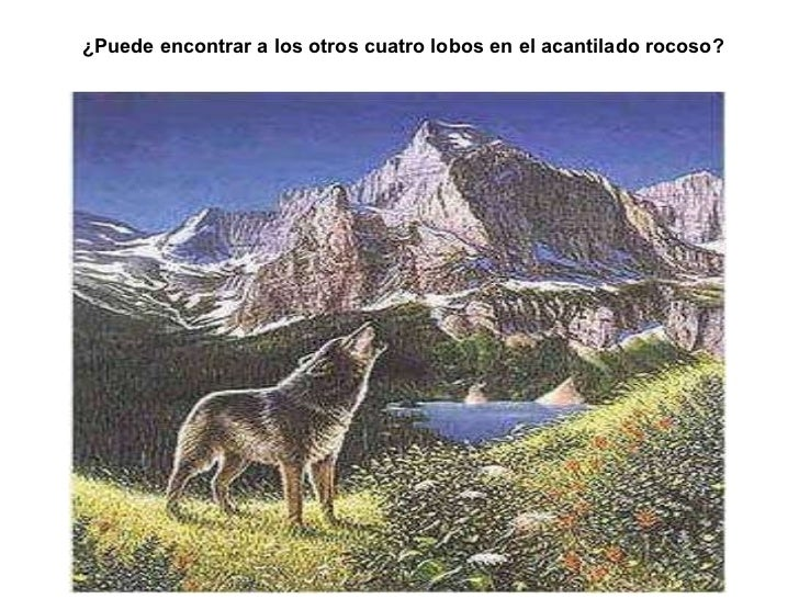 Lic. Edgar Celestino Bazan - I.E. Ventura Ccalamaqui - Barranca ¿Puede encontrar a los otros cuatro lobos en el acantilado...