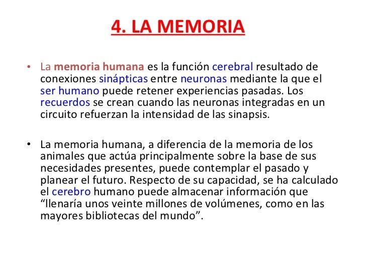 4. LA MEMORIA <ul><li>La  memoria humana  es la función  cerebral  resultado de conexiones  sinápticas  entre  neuronas  m...