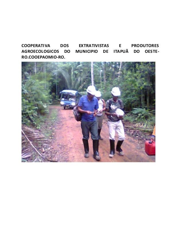 COOPERATIVA DOS EXTRATIVISTAS E PRODUTORES AGROECOLOGICOS DO MUNICIPIO DE ITAPUÃ DO OESTE- RO.COOEPAOMIO-RO.
