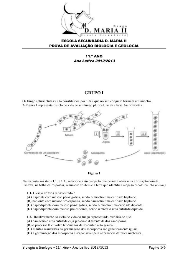 ESCOLA SECUNDÁRIA D. MARIA II                   PROVA DE AVALIAÇÃO BIOLOGIA E GEOLOGIA                                    ...
