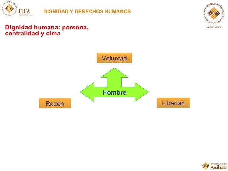 DIGNIDAD Y DERECHOS HUMANOS Hombre Razón Voluntad Libertad Dignidad humana: persona, centralidad y cima