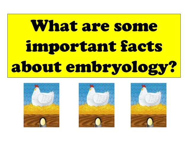 What are some important factsabout embryology?
