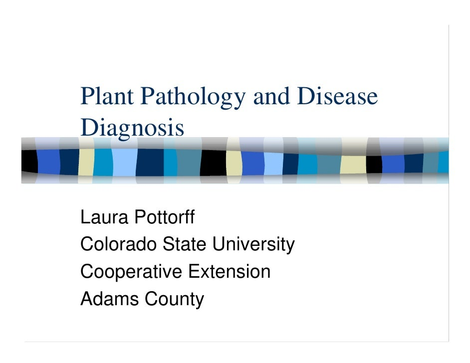 Plant Pathology and Disease Diagnosis   Laura Pottorff Colorado State University Cooperative Extension Adams County