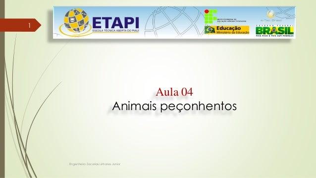 Engenheiro Zacarias Linhares Junior 1 Aula 04 Animais peçonhentos