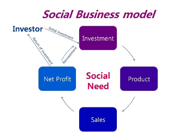 Social investment business intercorporate investments ppta