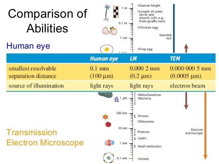 Comparison of Abilities Human eye Light microscope Transmission Electron Microscope