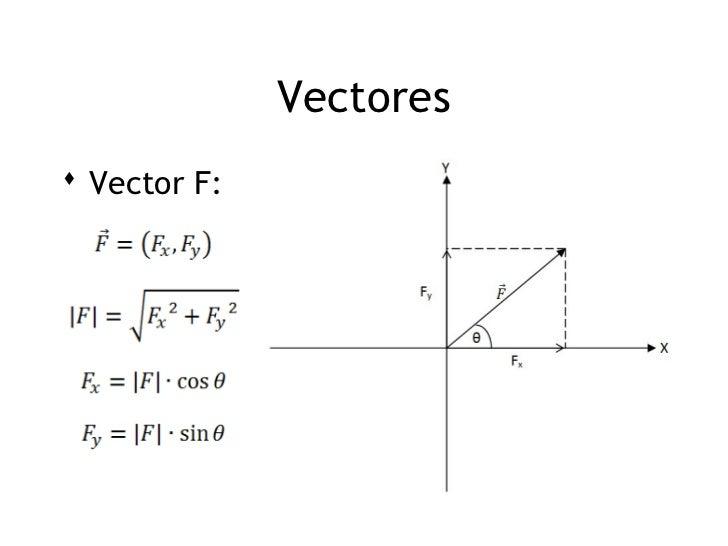 1 vectores for Espejos rectangulares horizontales